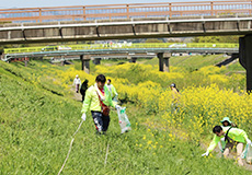 Cleaning activity in Japan